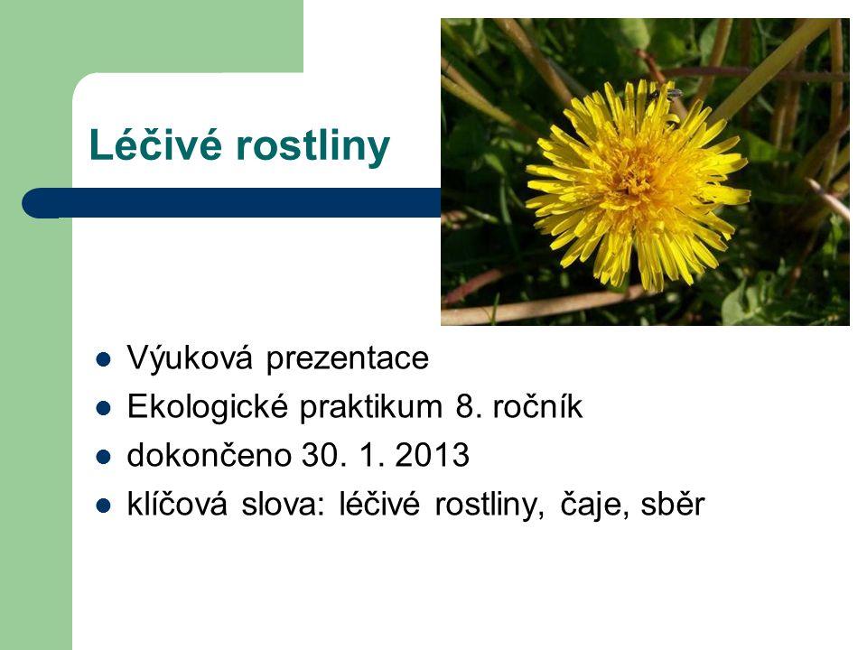Léčivé rostliny Výuková prezentace Ekologické praktikum 8.