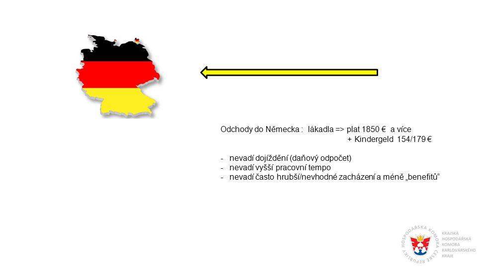 Odchody do Německa : lákadla => plat 1850 € a více + Kindergeld 154/179 € -nevadí dojíždění (daňový odpočet) -nevadí vyšší pracovní tempo -nevadí čast
