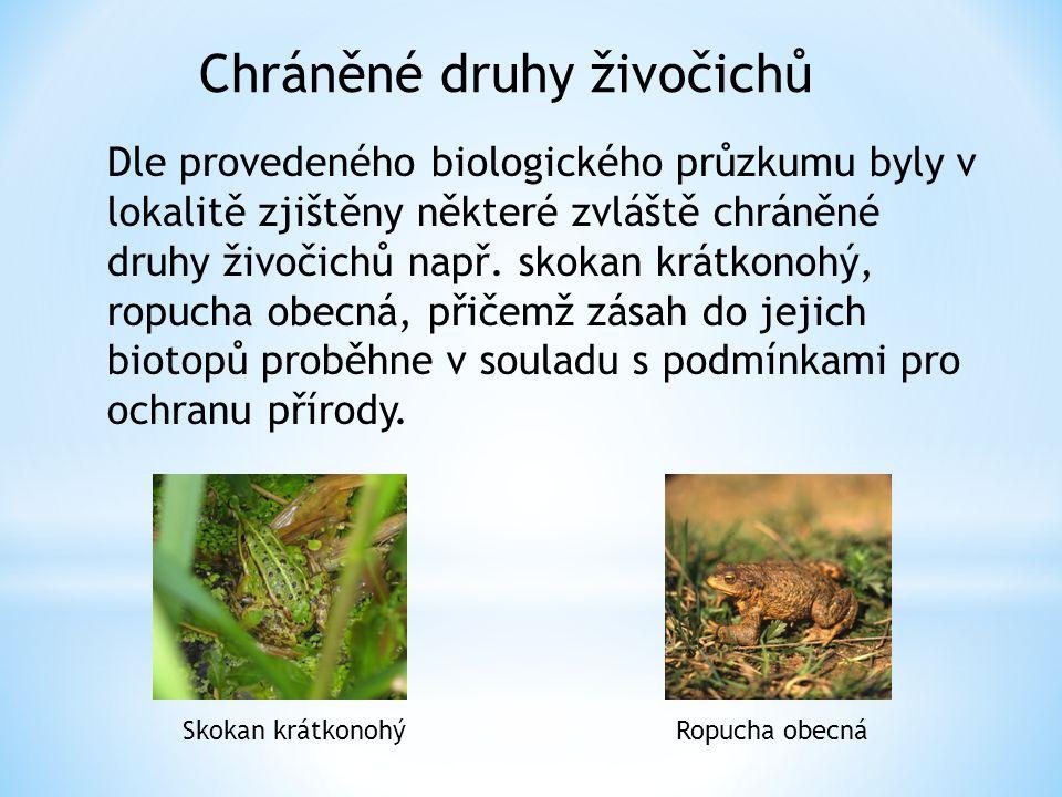 Dle provedeného biologického průzkumu byly v lokalitě zjištěny některé zvláště chráněné druhy živočichů např.