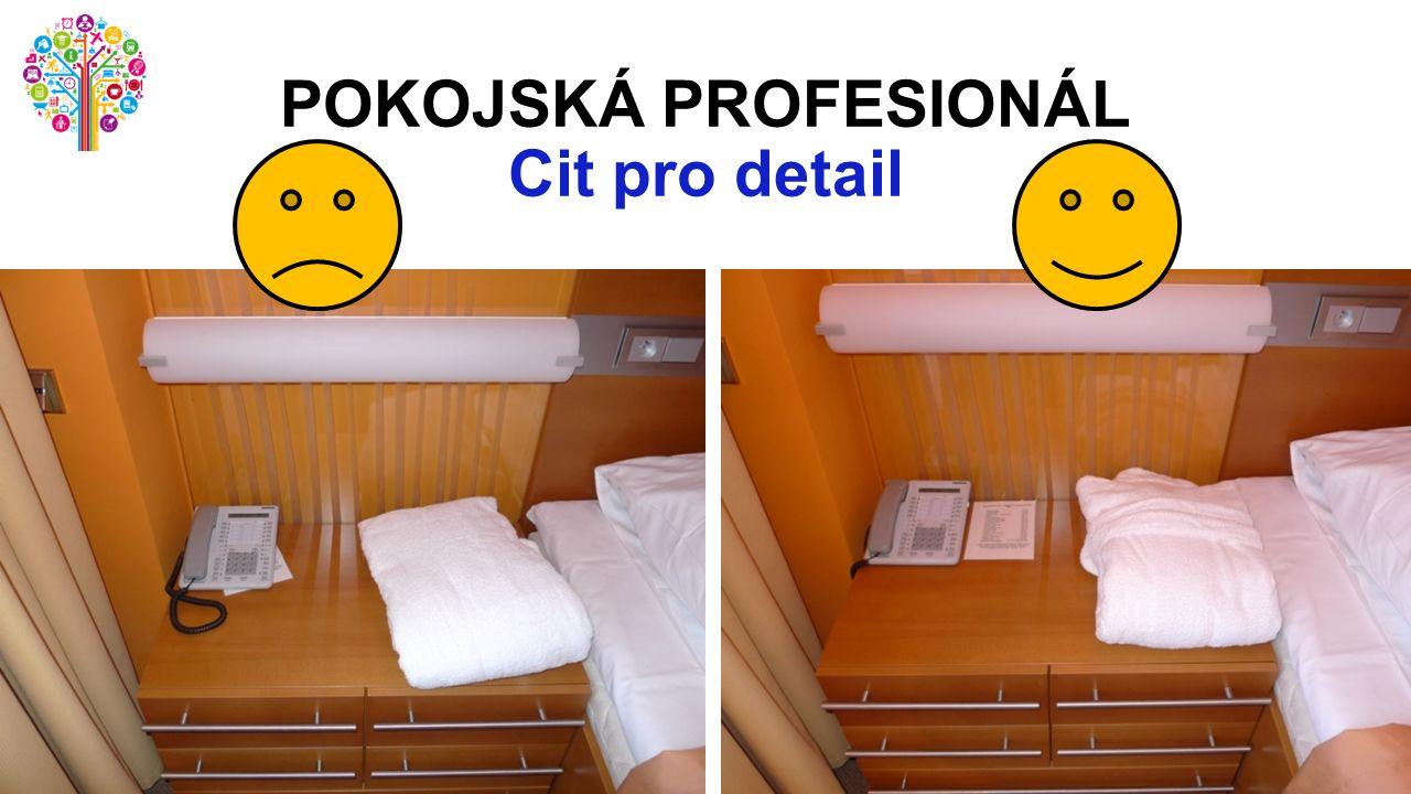 POKOJSKÁ PROFESIONÁL Cit pro detail