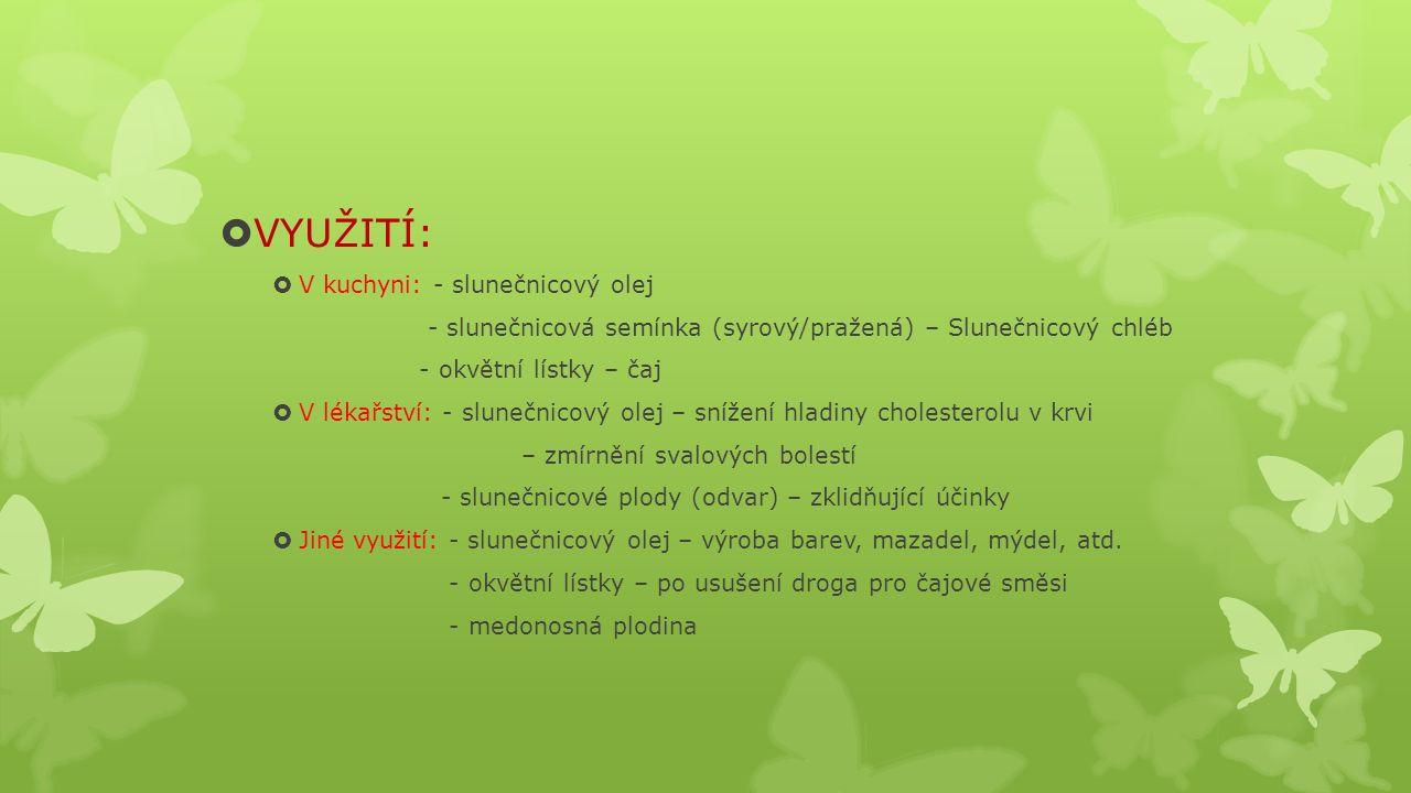  VYUŽITÍ:  V kuchyni: - slunečnicový olej - slunečnicová semínka (syrový/pražená) – Slunečnicový chléb - okvětní lístky – čaj  V lékařství: - slunečnicový olej – snížení hladiny cholesterolu v krvi – zmírnění svalových bolestí - slunečnicové plody (odvar) – zklidňující účinky  Jiné využití: - slunečnicový olej – výroba barev, mazadel, mýdel, atd.