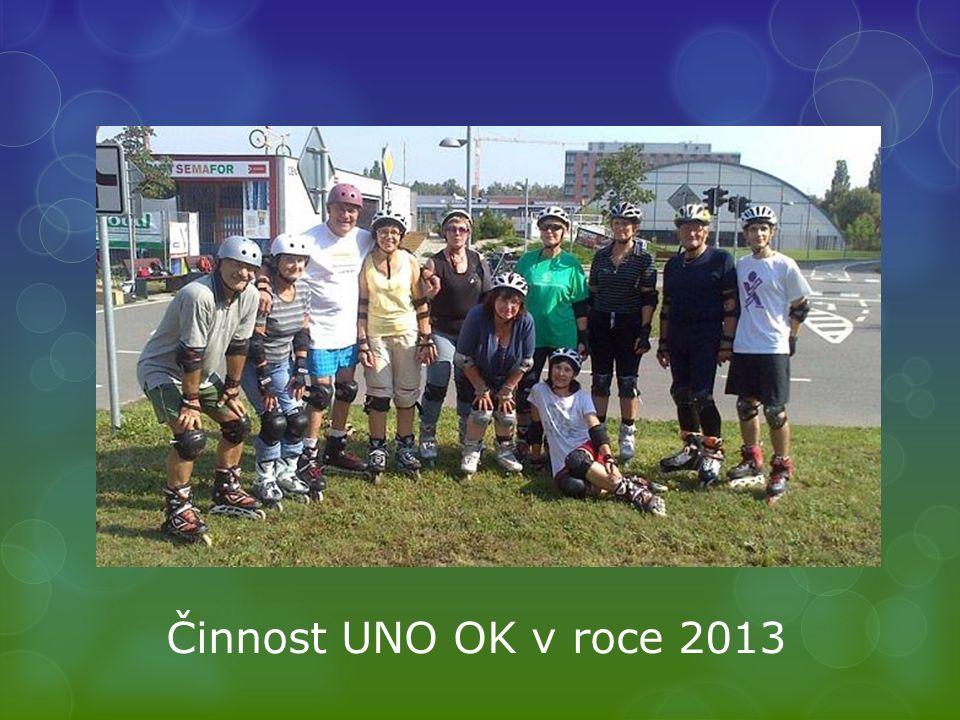 Činnost UNO OK v roce 2013