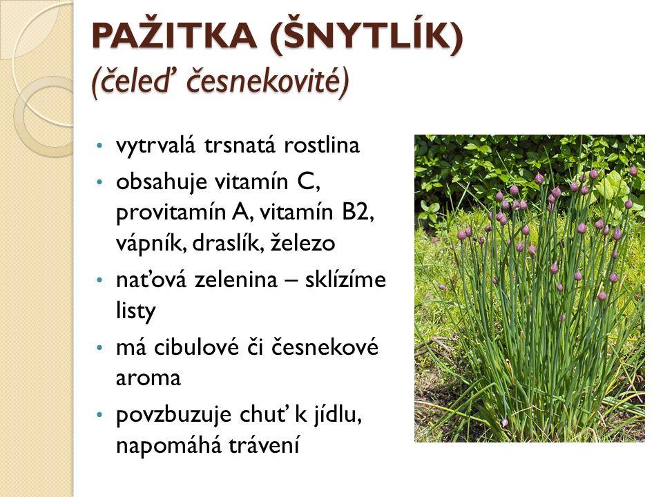 KOPR VONNÝ (čeleď miříkovité) jednoletá bylina žluté květy výrazná charakteristická vůně použití: zelenina, koření, léčivka využívá se nať, listy, kvetoucí okolík, zralé a nezralé semeno koprový čaj - zažívací potíže, nadýmání, ledvinová onemocnění, nespavost semena obsahují vitamín C, dále vápník, fosfor