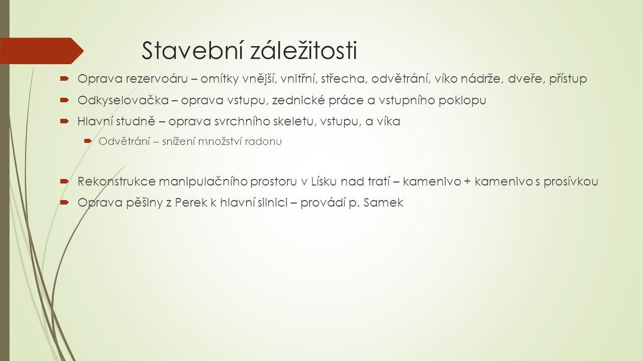Rekonstrukce čp.14  Oprava bytu nabídku vypracoval pan Štěpánek z Nové Bukové, jedná se o celkovou rekonstrukci bytu  včetně stavby komína - celková cena 385 700,- Kč vč.