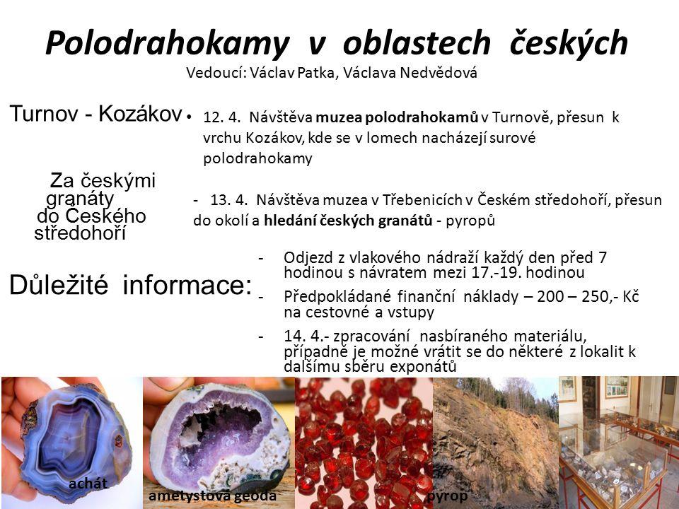 Polodrahokamy v oblastech českých Vedoucí: Václav Patka, Václava Nedvědová achát ametystová geoda Turnov - Kozákov 12.