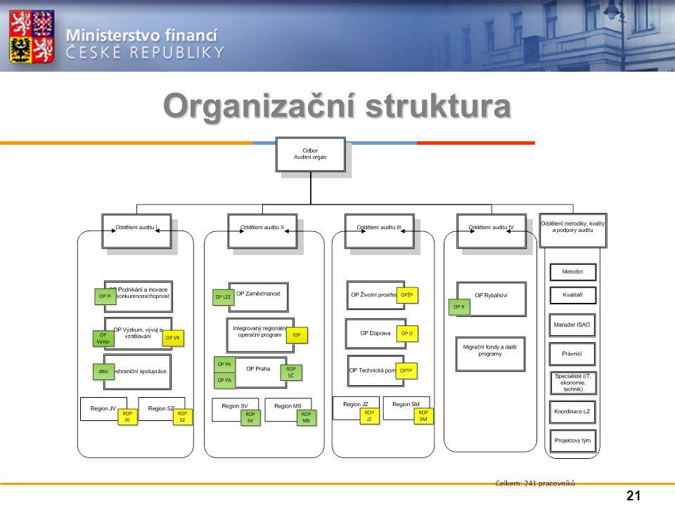Organizační struktura 21