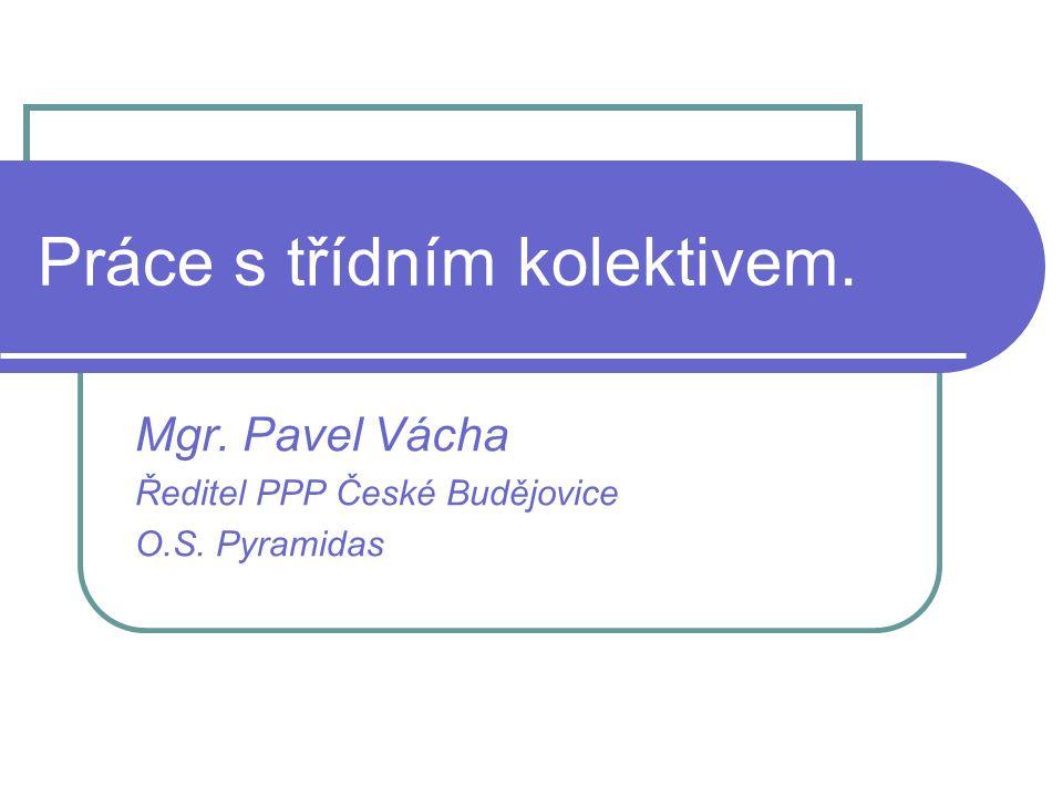 Práce s třídním kolektivem. Mgr. Pavel Vácha Ředitel PPP České Budějovice O.S. Pyramidas