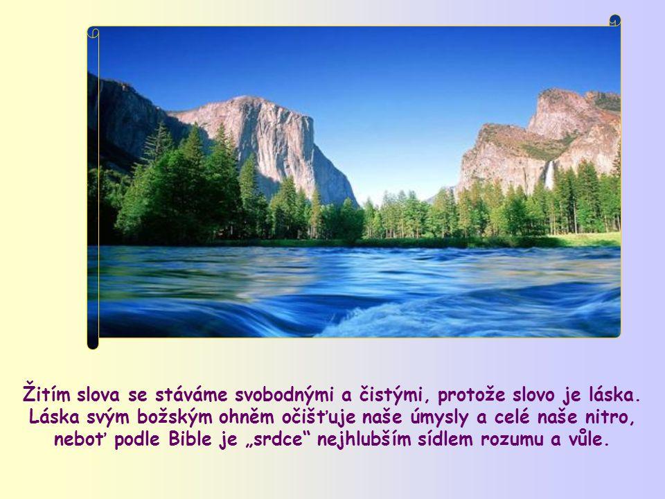 """""""Blahoslavení čistého srdce, neboť oni budou vidět Boha."""