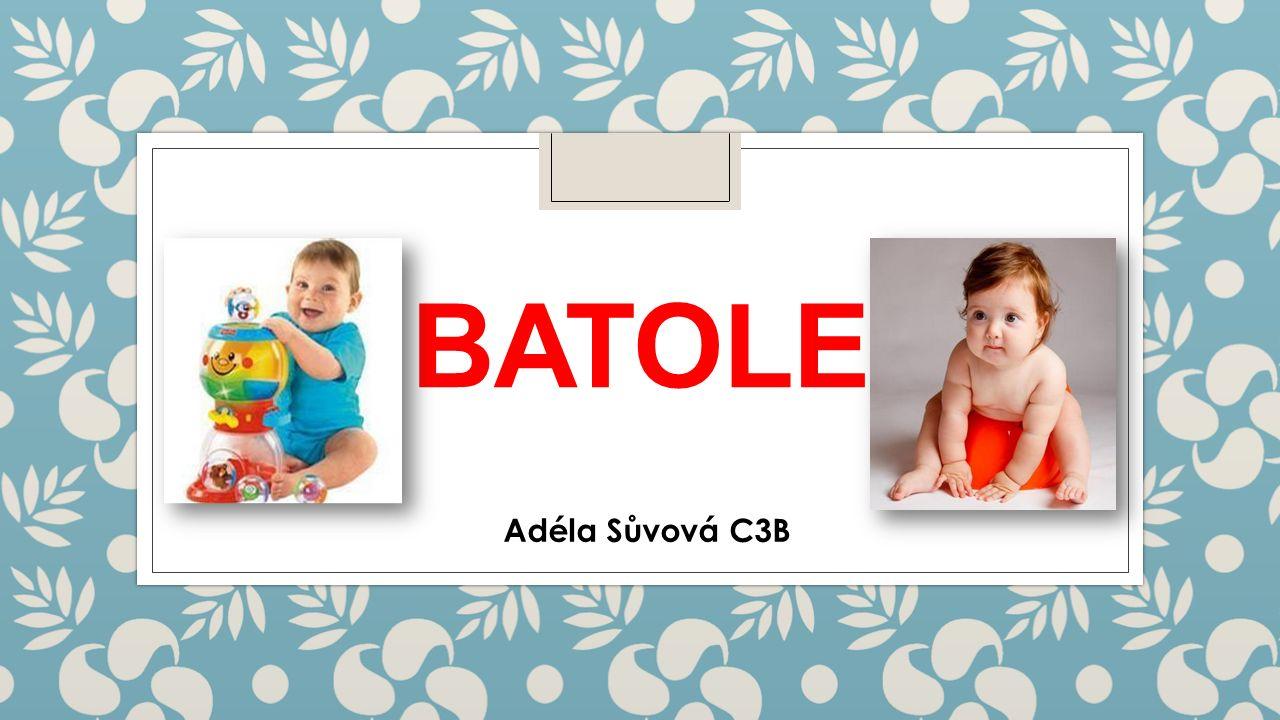 BATOLE Adéla Sůvová C3B