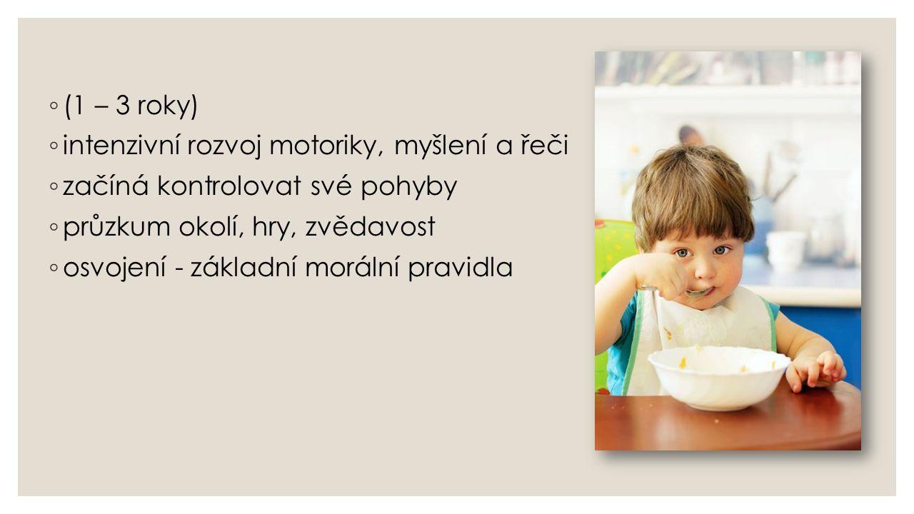 ◦ (1 – 3 roky) ◦ intenzivní rozvoj motoriky, myšlení a řeči ◦ začíná kontrolovat své pohyby ◦ průzkum okolí, hry, zvědavost ◦ osvojení - základní morá