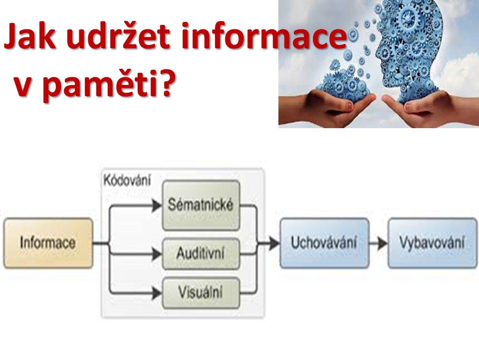 Jak udržet informace v paměti