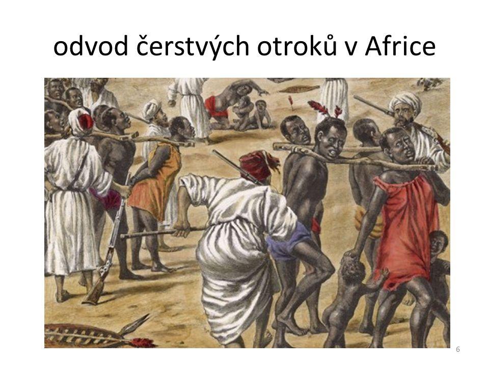 odvod čerstvých otroků v Africe 6