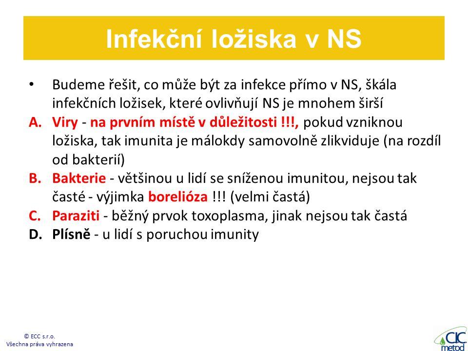 Budeme řešit, co může být za infekce přímo v NS, škála infekčních ložisek, které ovlivňují NS je mnohem širší A.Viry - na prvním místě v důležitosti !!!, pokud vzniknou ložiska, tak imunita je málokdy samovolně zlikviduje (na rozdíl od bakterií) B.Bakterie - většinou u lidí se sníženou imunitou, nejsou tak časté - výjimka borelióza !!.