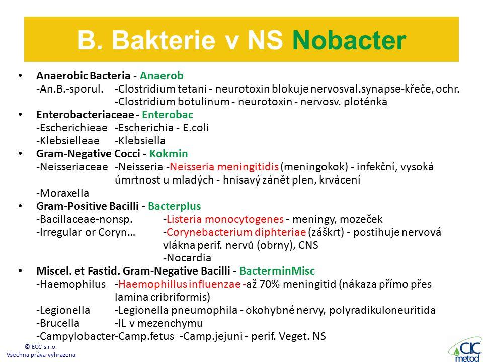 Anaerobic Bacteria - Anaerob -An.B.-sporul.-Clostridium tetani - neurotoxin blokuje nervosval.synapse-křeče, ochr.