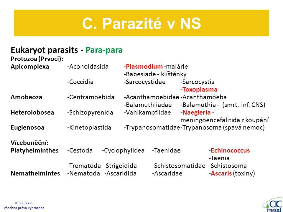 Eukaryot parasits - Para-para Protozoa (Prvoci): Apicomplexa -Aconoidasida-Plasmodium -malárie -Babesiade - klíštěnky -Coccidia-Sarcocystidae -Sarcocystis -Toxoplasma Amobeoza -Centramoebida-Acanthamoebidae-Acanthamoeba -Balamuthiiadae-Balamuthia - (smrt.