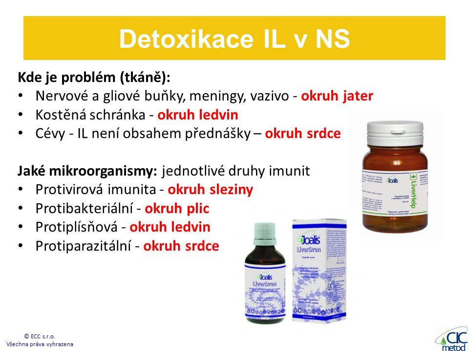 Kde je problém (tkáně): Nervové a gliové buňky, meningy, vazivo - okruh jater Kostěná schránka - okruh ledvin Cévy - IL není obsahem přednášky – okruh srdce Jaké mikroorganismy: jednotlivé druhy imunit Protivirová imunita - okruh sleziny Protibakteriální - okruh plic Protiplísňová - okruh ledvin Protiparazitální - okruh srdce Detoxikace IL v NS © ECC s.r.o.