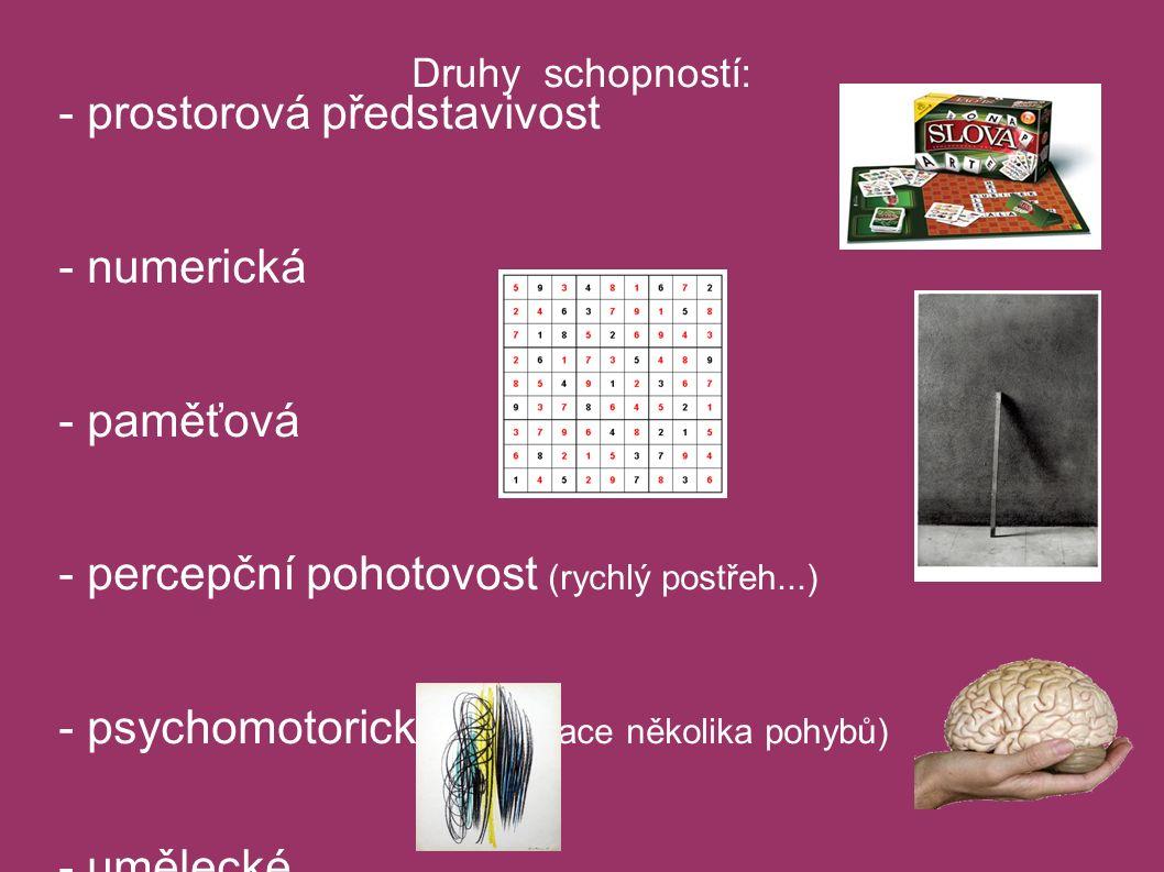 Druhy schopností: - verbální - prostorová představivost - numerická - paměťová - percepční pohotovost (rychlý postřeh...) - psychomotorické (kordinace několika pohybů) - umělecké