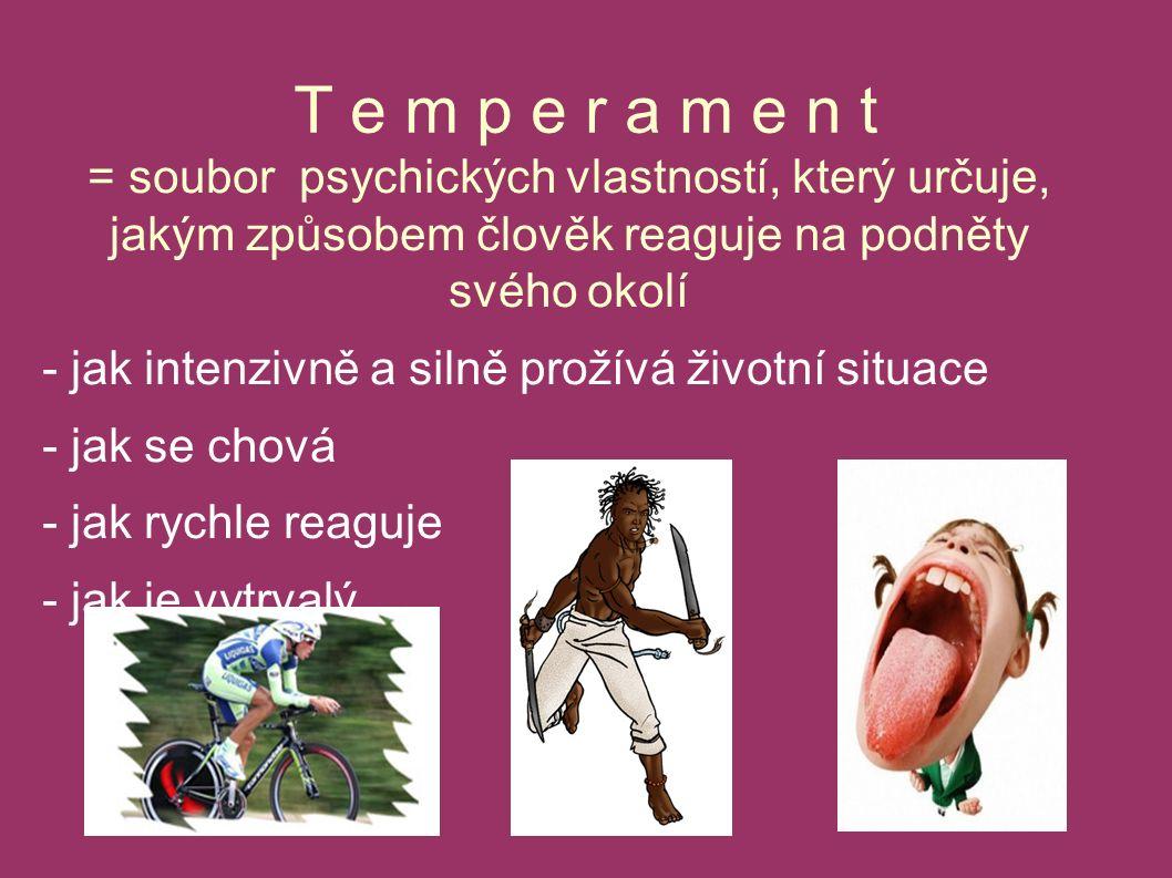 T e m p e r a m e n t = soubor psychických vlastností, který určuje, jakým způsobem člověk reaguje na podněty svého okolí - jak intenzivně a silně prožívá životní situace - jak se chová - jak rychle reaguje - jak je vytrvalý...