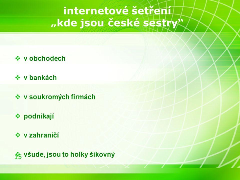 """15 internetové šetření """"kde jsou české sestry  v obchodech  v bankách  v soukromých firmách  podnikají  v zahraničí  všude, jsou to holky šikovný"""