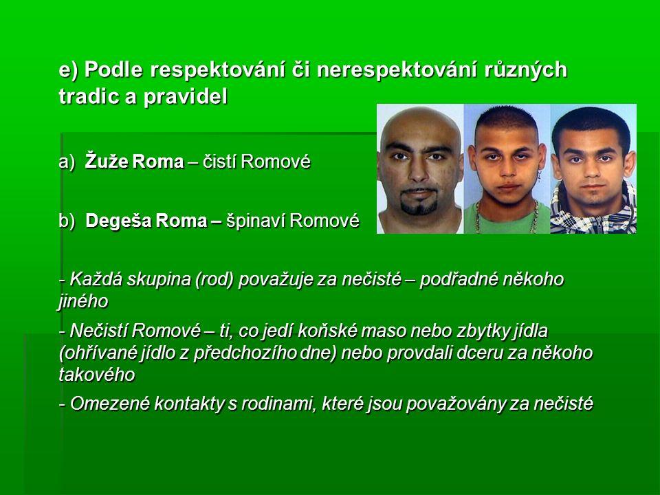 e) Podle respektování či nerespektování různých tradic a pravidel a) Žuže Roma – čistí Romové b) Degeša Roma – špinaví Romové - Každá skupina (rod) po