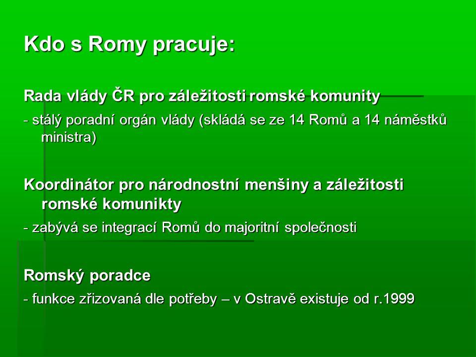 Kdo s Romy pracuje: Rada vlády ČR pro záležitosti romské komunity - stálý poradní orgán vlády (skládá se ze 14 Romů a 14 náměstků ministra) Koordinátor pro národnostní menšiny a záležitosti romské komunikty - zabývá se integrací Romů do majoritní společnosti Romský poradce - funkce zřizovaná dle potřeby – v Ostravě existuje od r.1999