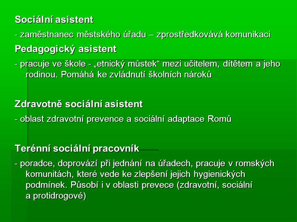 """Sociální asistent - zaměstnanec městského úřadu – zprostředkovává komunikaci Pedagogický asistent - pracuje ve škole - """"etnický můstek mezi učitelem, dítětem a jeho rodinou."""