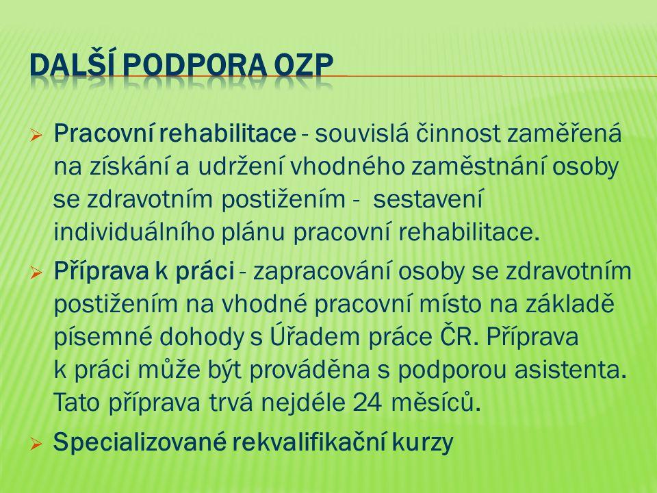  Pracovní rehabilitace - souvislá činnost zaměřená na získání a udržení vhodného zaměstnání osoby se zdravotním postižením - sestavení individuálního plánu pracovní rehabilitace.