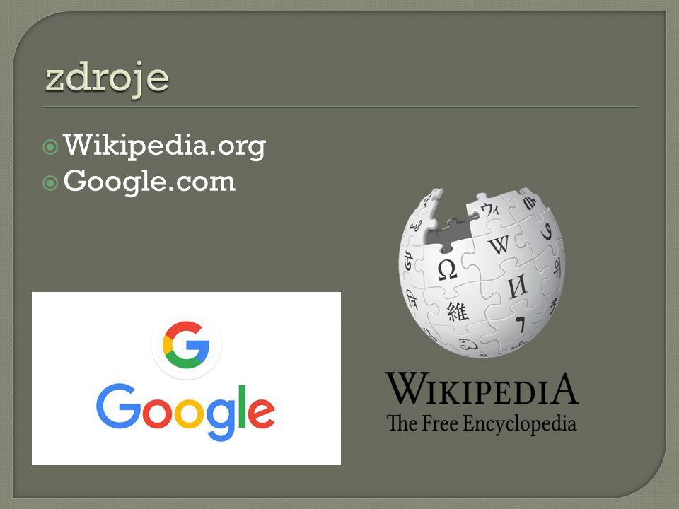  Wikipedia.org  Google.com