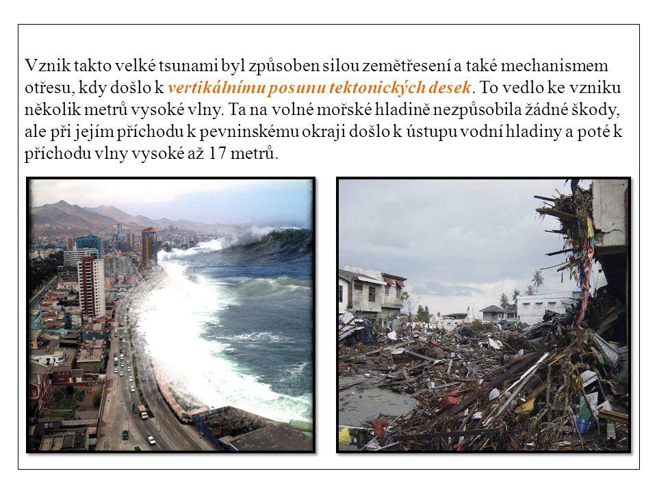Vznik takto velké tsunami byl způsoben silou zemětřesení a také mechanismem otřesu, kdy došlo k vertikálnímu posunu tektonických desek.