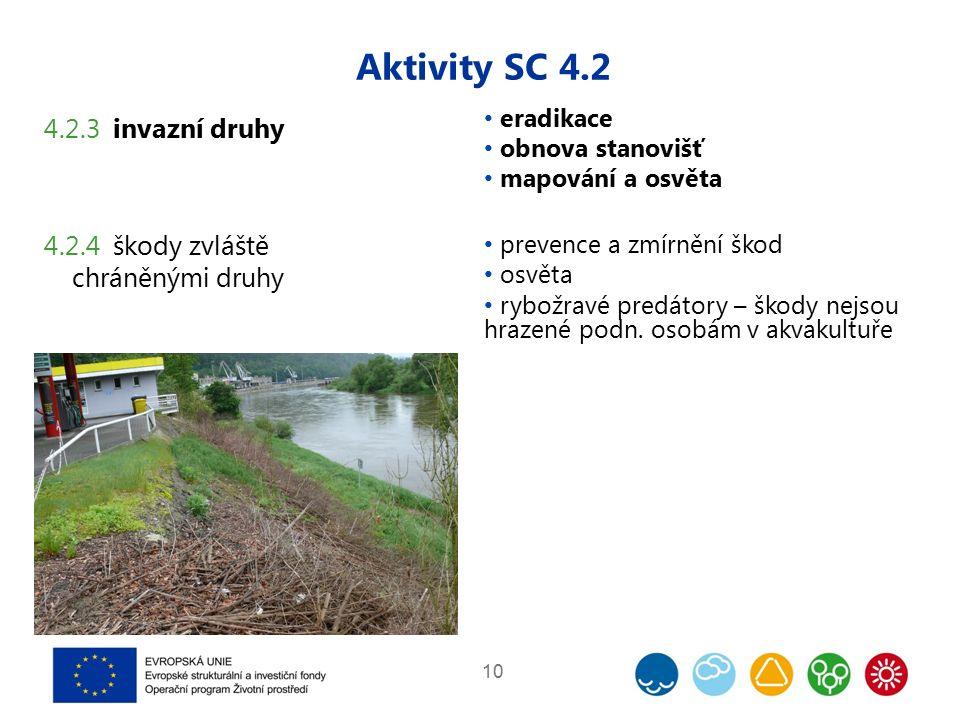 Aktivity SC 4.2 10 4.2.3 invazní druhy 4.2.4 škody zvláště chráněnými druhy eradikace obnova stanovišť mapování a osvěta prevence a zmírnění škod osvěta rybožravé predátory – škody nejsou hrazené podn.