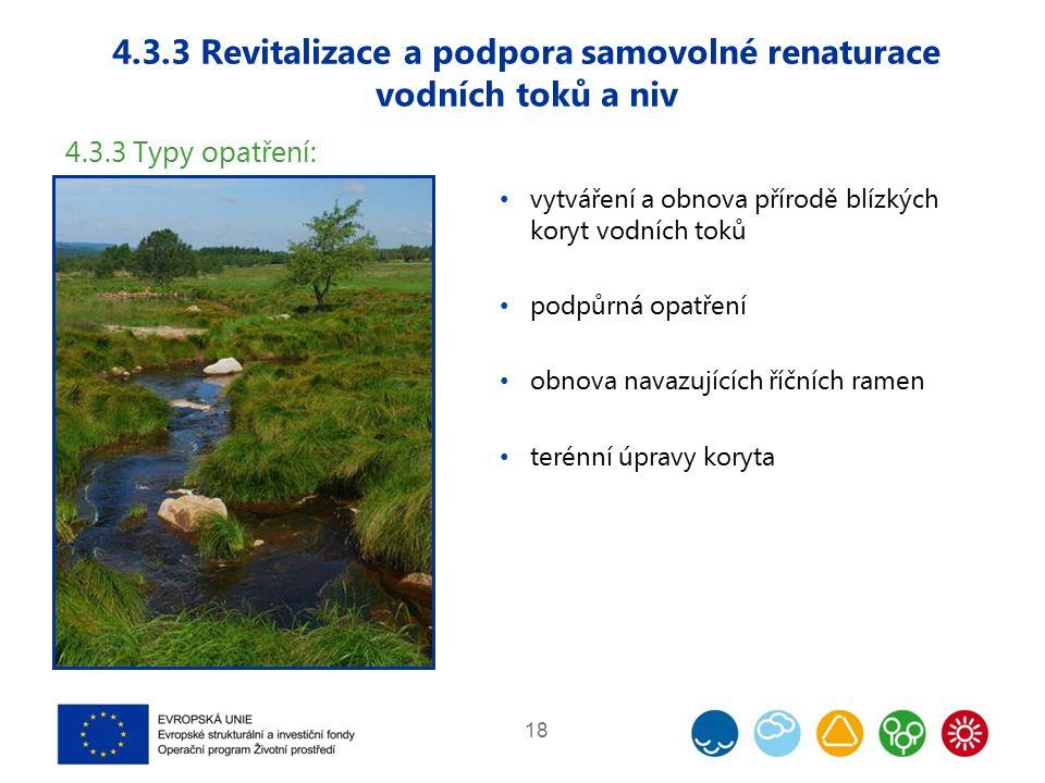 4.3.3 Revitalizace a podpora samovolné renaturace vodních toků a niv 18 4.3.3 Typy opatření: vytváření a obnova přírodě blízkých koryt vodních toků podpůrná opatření obnova navazujících říčních ramen terénní úpravy koryta