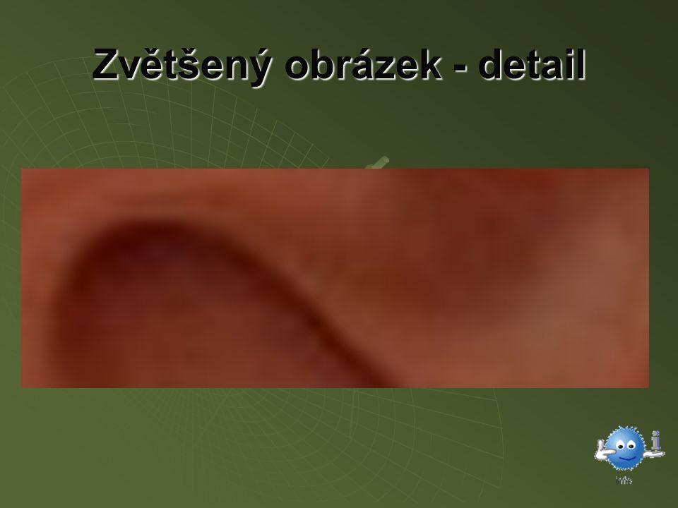 Zvětšený obrázek - detail