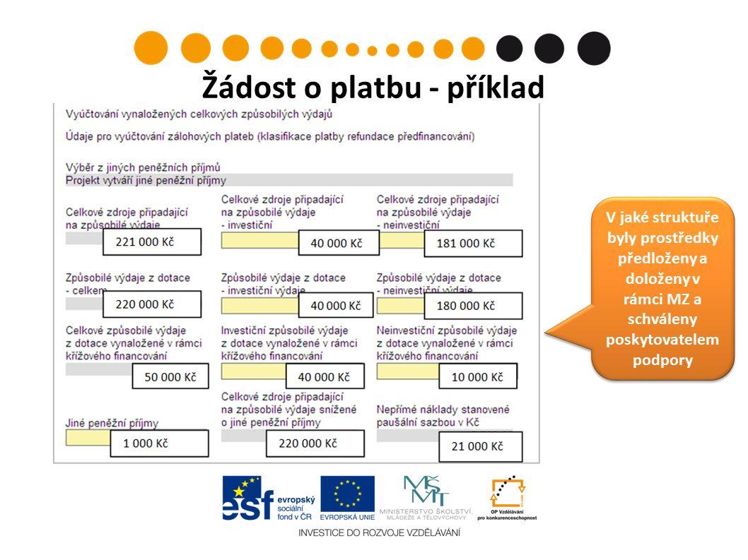Žádost o platbu - příklad V jaké struktuře byly prostředky předloženy a doloženy v rámci MZ a schváleny poskytovatelem podpory