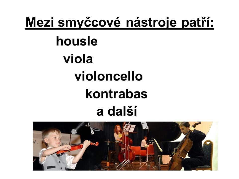 Mezi smyčcové nástroje patří: housle viola violoncello kontrabas a další
