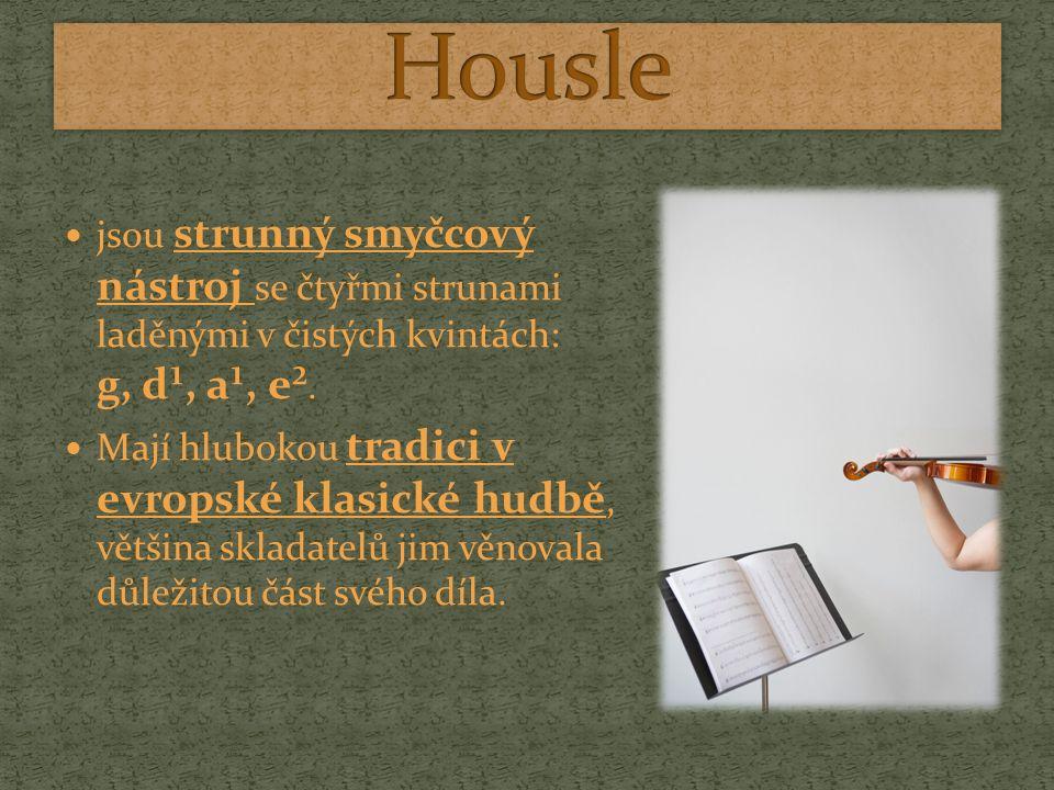 Housle jsou nejmenší z rodiny houslových nástrojů která ještě mimo jiné obsahuje violu a violoncello Příbuzný smyčcový nástroj – kontrabas, však svou stavbou patří mezi gamby (stejně jako např.