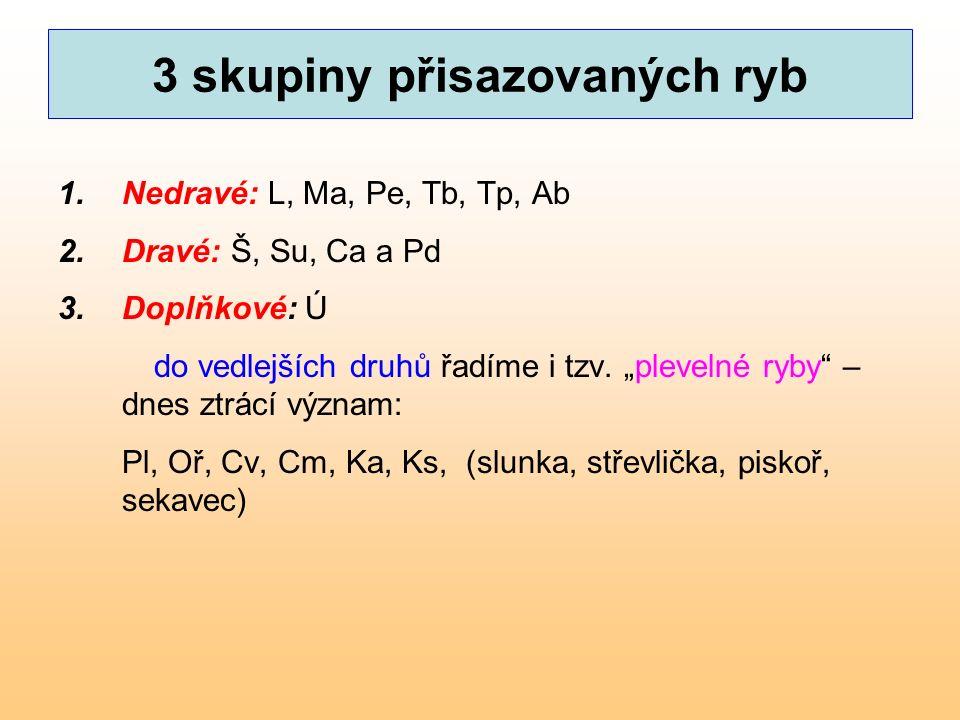 3 skupiny přisazovaných ryb 1.Nedravé: L, Ma, Pe, Tb, Tp, Ab 2.Dravé: Š, Su, Ca a Pd 3.Doplňkové: Ú do vedlejších druhů řadíme i tzv.