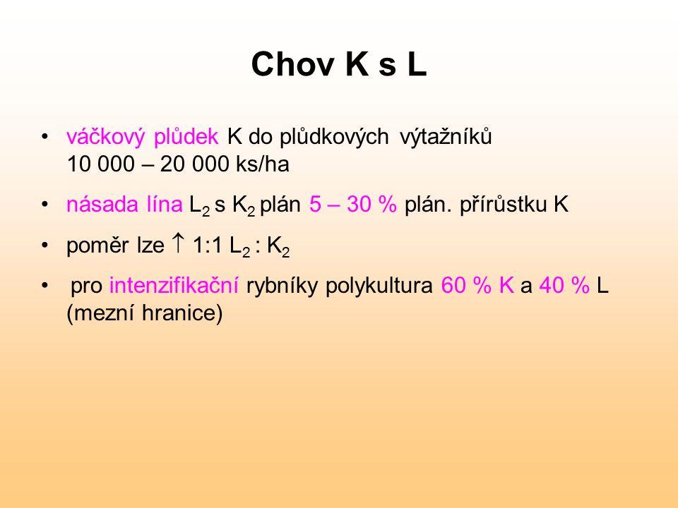 Chov K s L váčkový plůdek K do plůdkových výtažníků 10 000 – 20 000 ks/ha násada lína L 2 s K 2 plán 5 – 30 % plán. přírůstku K poměr lze  1:1 L 2 :