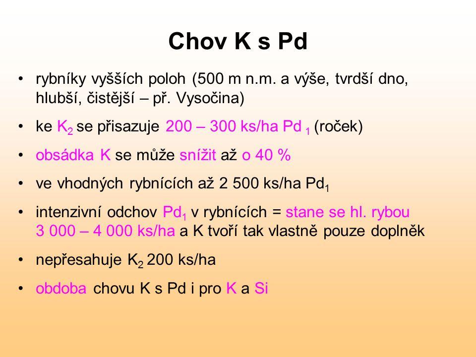 Chov K s Pd rybníky vyšších poloh (500 m n.m. a výše, tvrdší dno, hlubší, čistější – př. Vysočina) ke K 2 se přisazuje 200 – 300 ks/ha Pd 1 (roček) ob