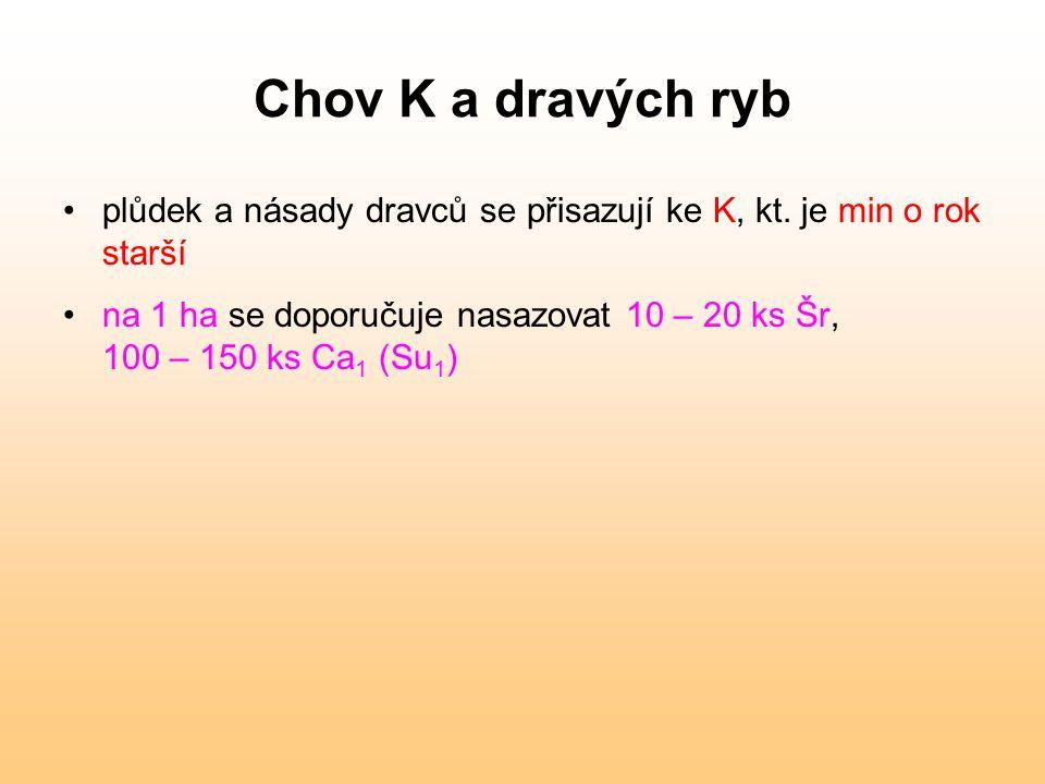 Chov K a dravých ryb plůdek a násady dravců se přisazují ke K, kt. je min o rok starší na 1 ha se doporučuje nasazovat 10 – 20 ks Šr, 100 – 150 ks Ca