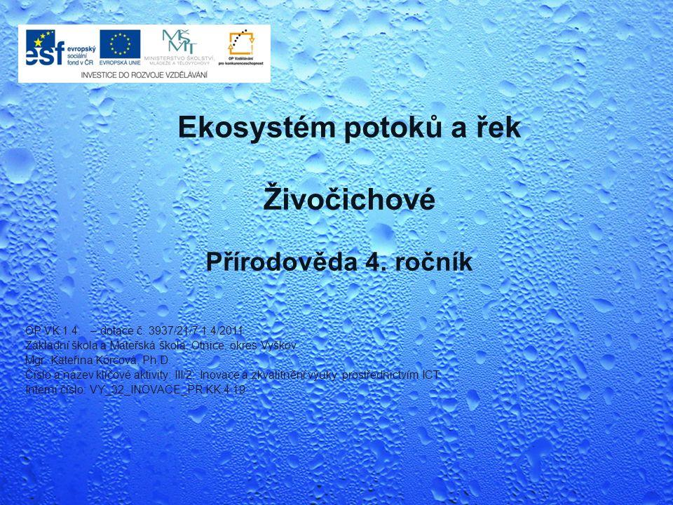 Přírodověda 4. ročník Ekosystém potoků a řek Živočichové OP VK 1.4.