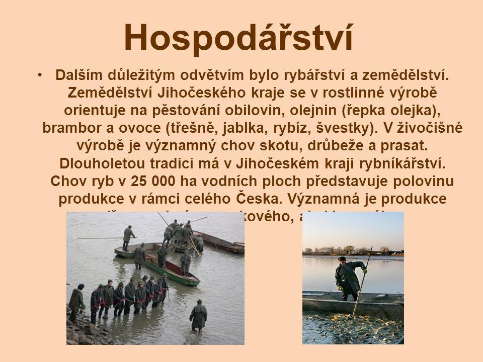 Hospodářství Dalším důležitým odvětvím bylo rybářství a zemědělství.