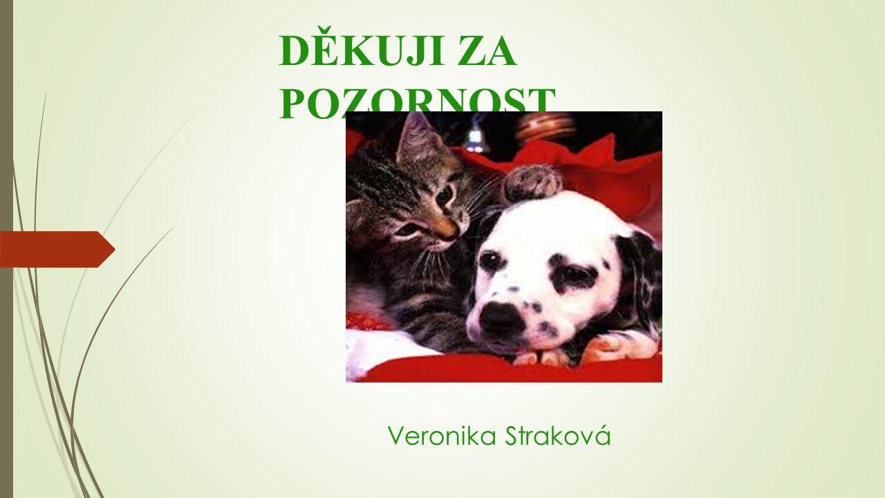 DĚKUJI ZA POZORNOST Veronika Straková