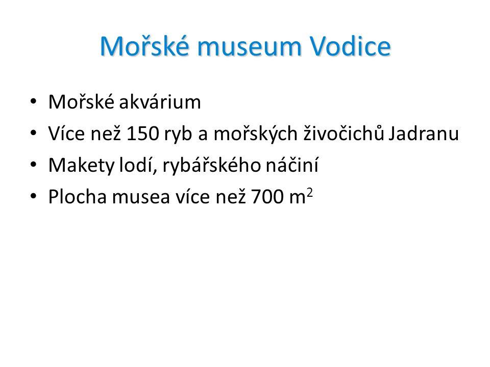 Mořské museum Vodice Mořské akvárium Více než 150 ryb a mořských živočichů Jadranu Makety lodí, rybářského náčiní Plocha musea více než 700 m 2