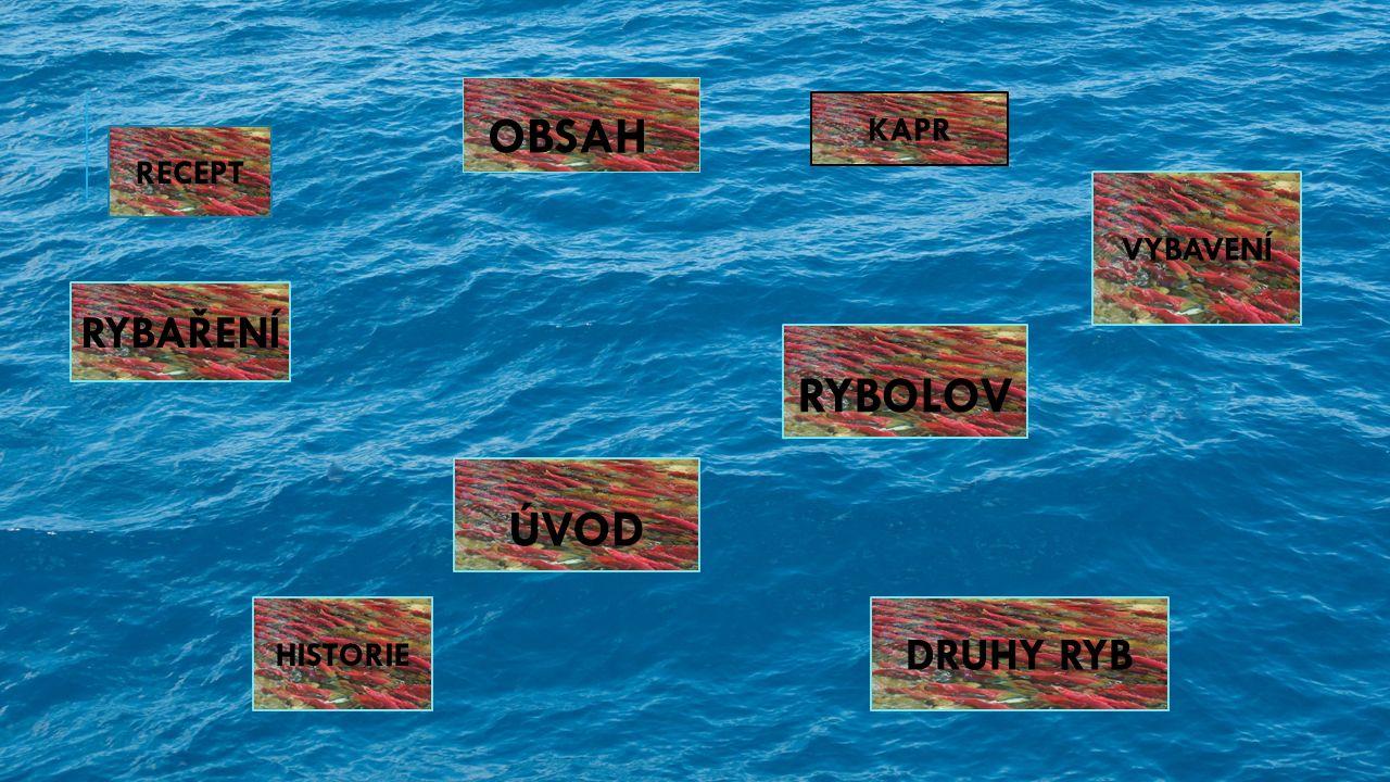 ÚVOD RYBOLOV OBSAH RYBAŘENÍ HISTORIE DRUHY RYB VYBAVENÍ KAPR RECEPT