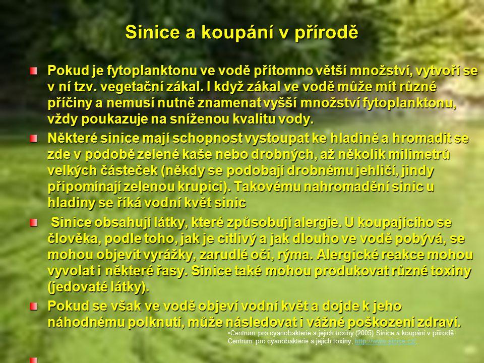 Sinice a koupání v přírodě Pokud je fytoplanktonu ve vodě přítomno větší množství, vytvoří se v ní tzv.