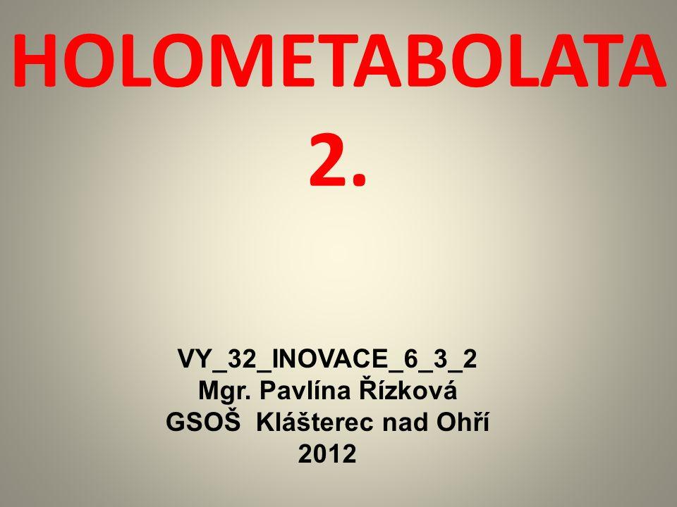HOLOMETABOLATA 2. VY_32_INOVACE_6_3_2 Mgr. Pavlína Řízková GSOŠ Klášterec nad Ohří 2012