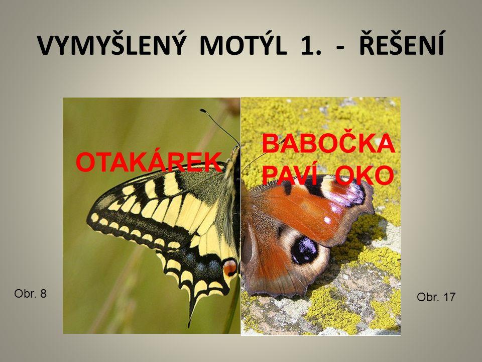 VYMYŠLENÝ MOTÝL 1. - ŘEŠENÍ Obr. 8 Obr. 17 OTAKÁREK BABOČKA PAVÍ OKO