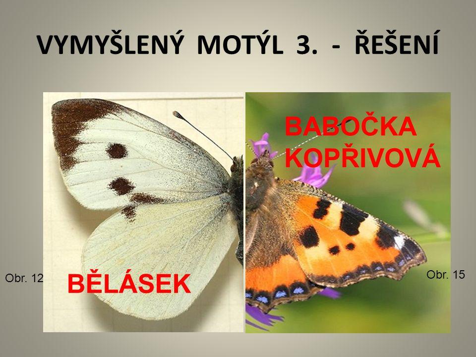 VYMYŠLENÝ MOTÝL 3. - ŘEŠENÍ Obr. 12 Obr. 15 BĚLÁSEK BABOČKA KOPŘIVOVÁ