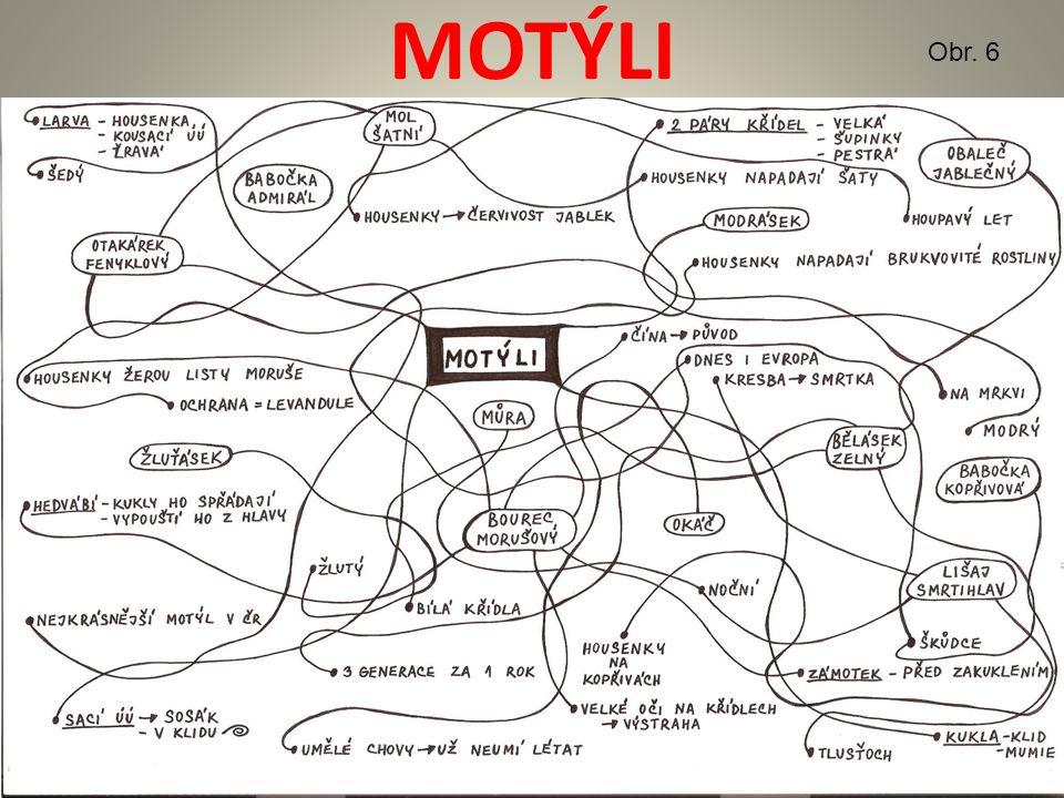 MOTÝLI - VYSVĚTLENÍ PRACOVNÍ LIST – studenti si vytvoří výpisky ze spojovačky a poté si prohlédneme obrázky motýlů SEZNAM ZKRATEK ÚÚ – ústní ústrojí