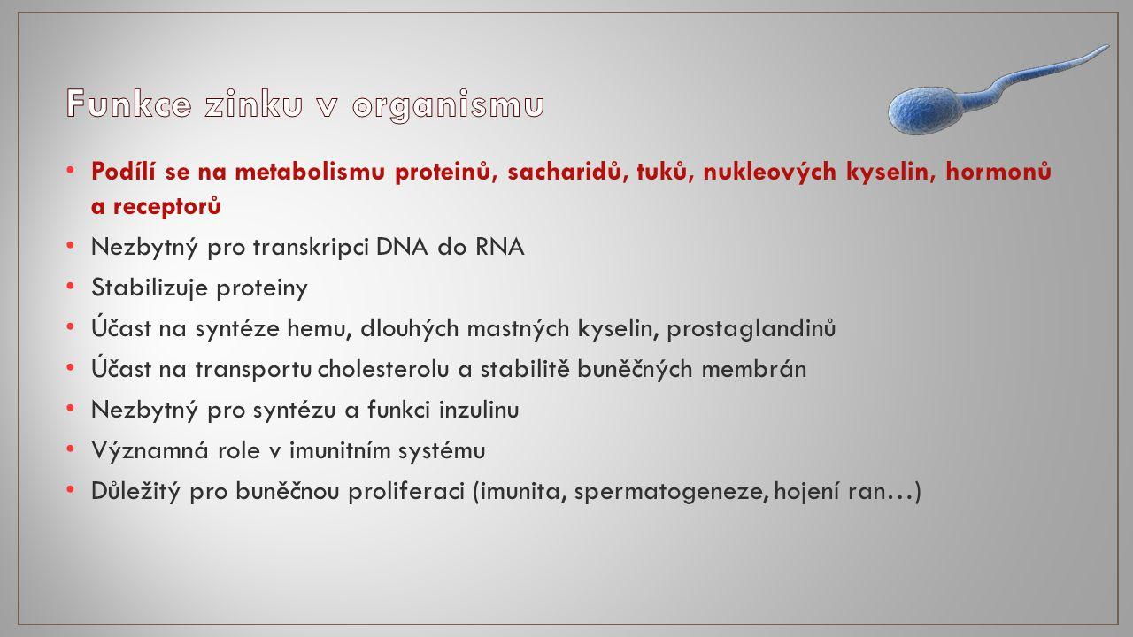 Podílí se na metabolismu proteinů, sacharidů, tuků, nukleových kyselin, hormonů a receptorů Nezbytný pro transkripci DNA do RNA Stabilizuje proteiny Účast na syntéze hemu, dlouhých mastných kyselin, prostaglandinů Účast na transportu cholesterolu a stabilitě buněčných membrán Nezbytný pro syntézu a funkci inzulinu Významná role v imunitním systému Důležitý pro buněčnou proliferaci (imunita, spermatogeneze, hojení ran…)